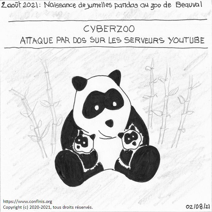 2 août 2021 : Naissance de jumelles pandas au zoo de Beauval